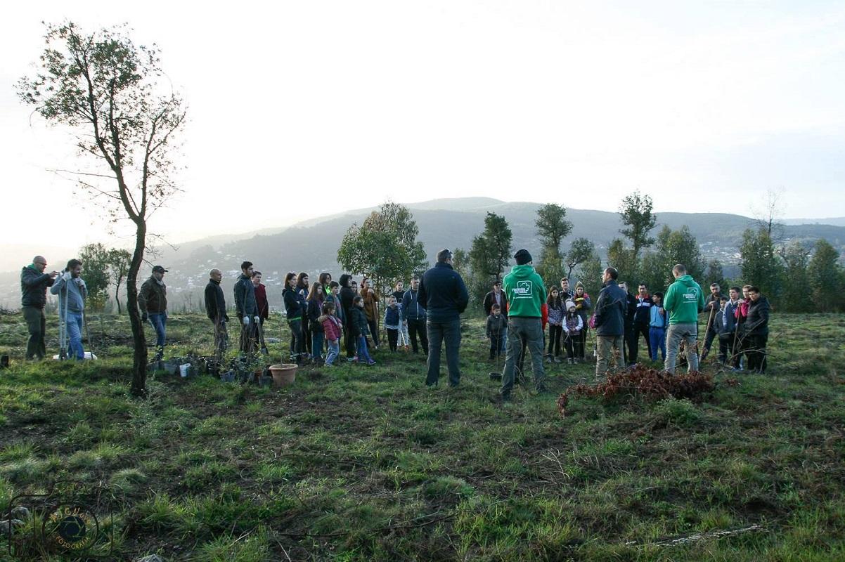 Mais de 500 árvores foram plantadas no Monte da Padela