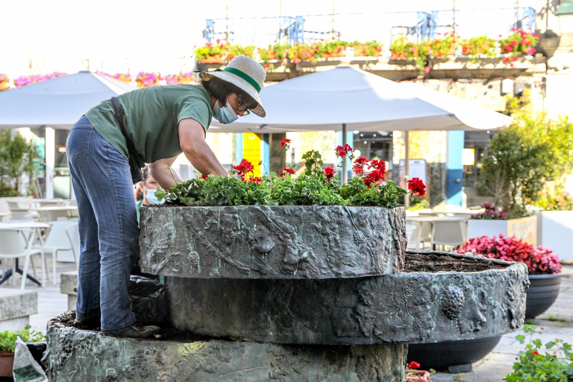 Cidade de Viana enfeitada com dois mil vasos de flores