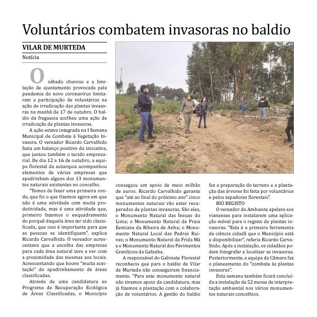 Voluntários combatem invasoras no baldio